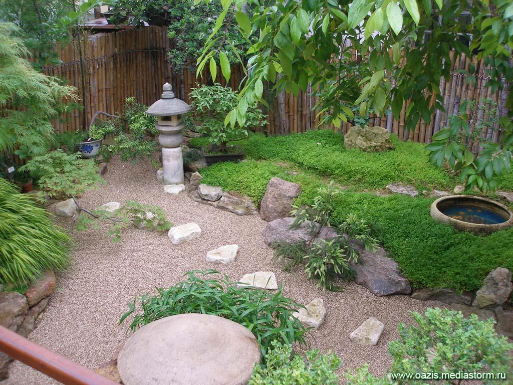 Фото ботанического сада в петербурге